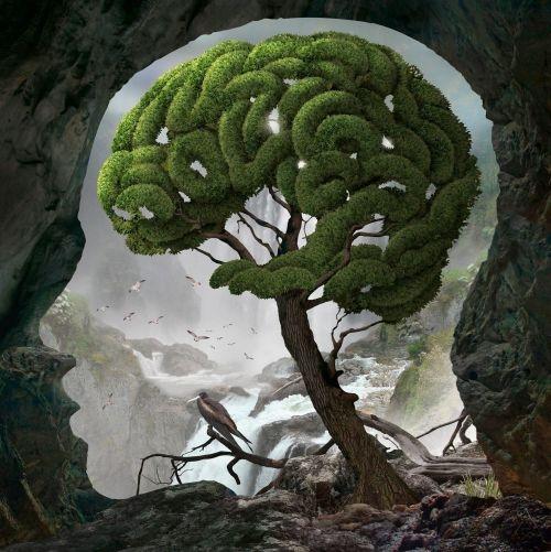 Zona del Pensiero Thought Area